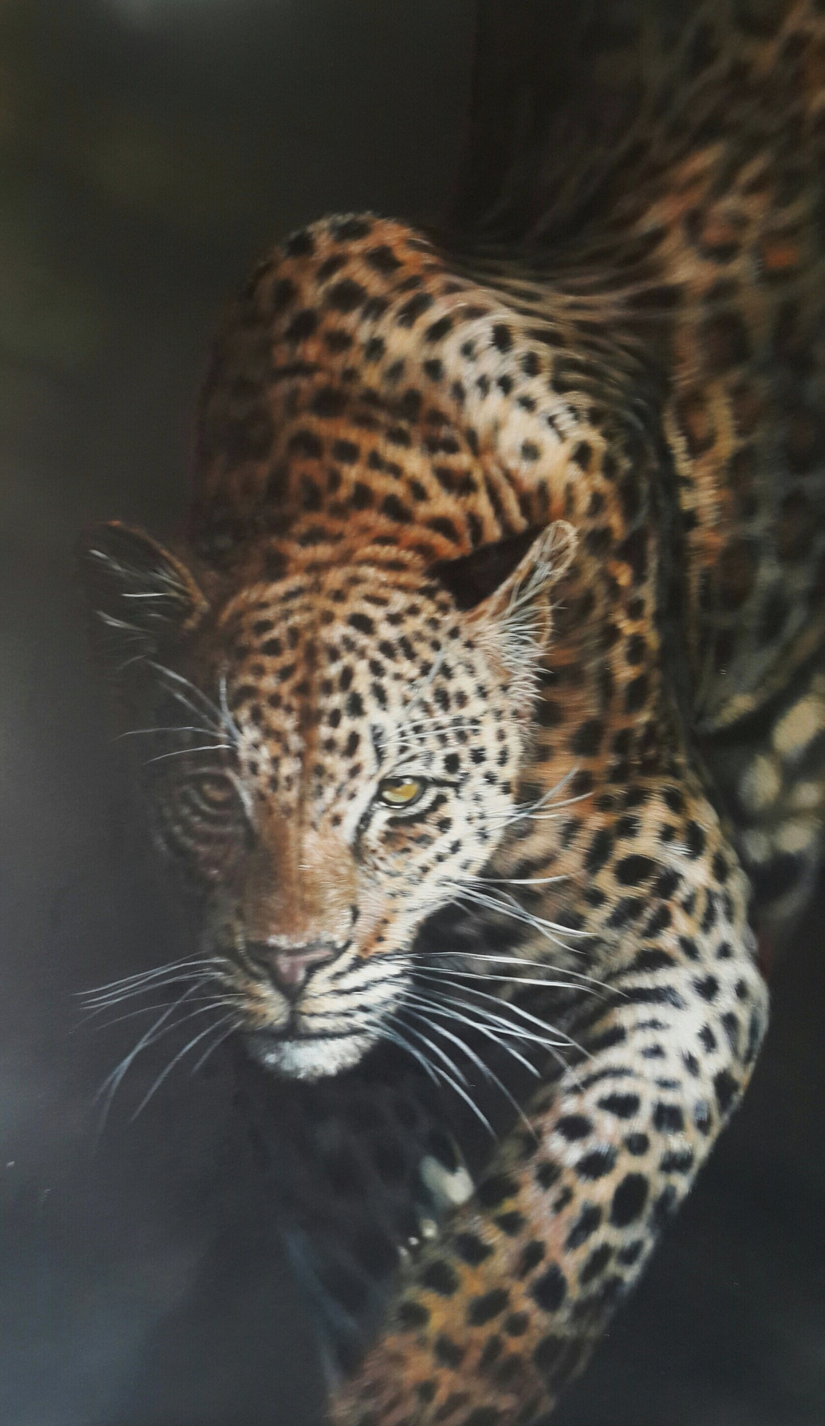 """A Danger in the Shadows"", 127cm x 116cm, Acrylic on Canvas (SOLD)"